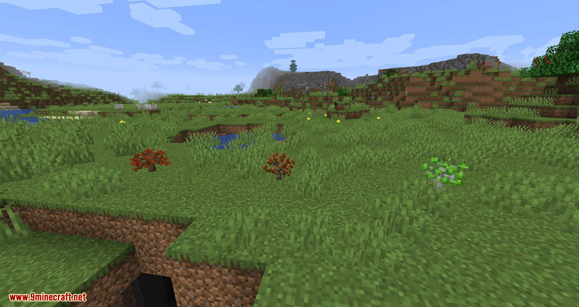 Premium Wood mod for minecraft 06