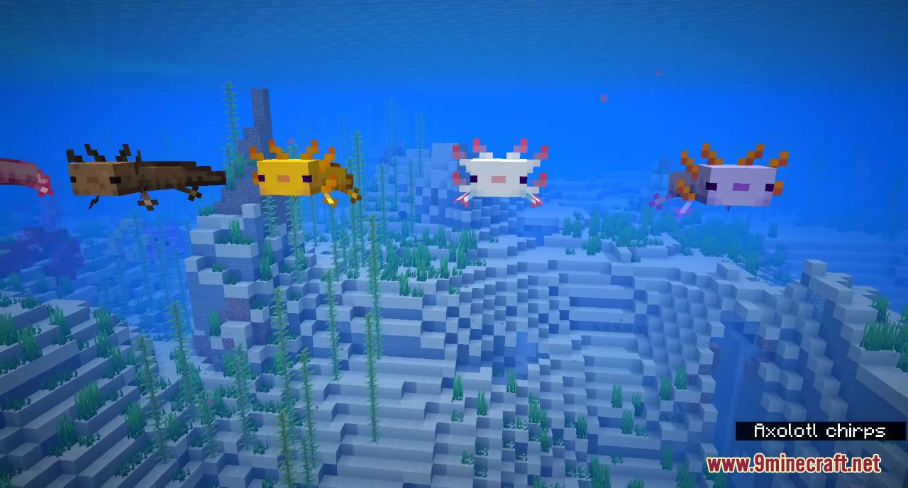 Minecraft 1.17 Snapshot 20w51a Screenshots 3