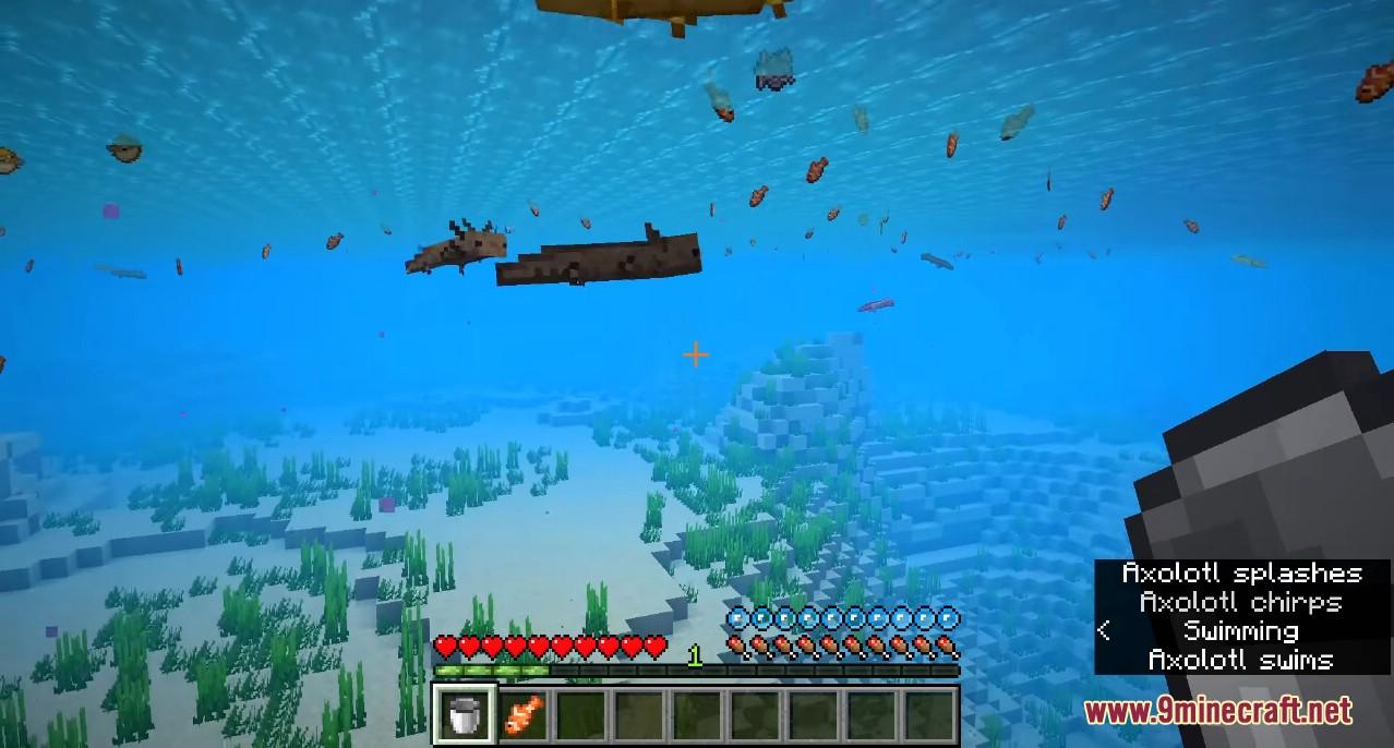 Minecraft 1.17 Snapshot 20w51a Screenshots 5
