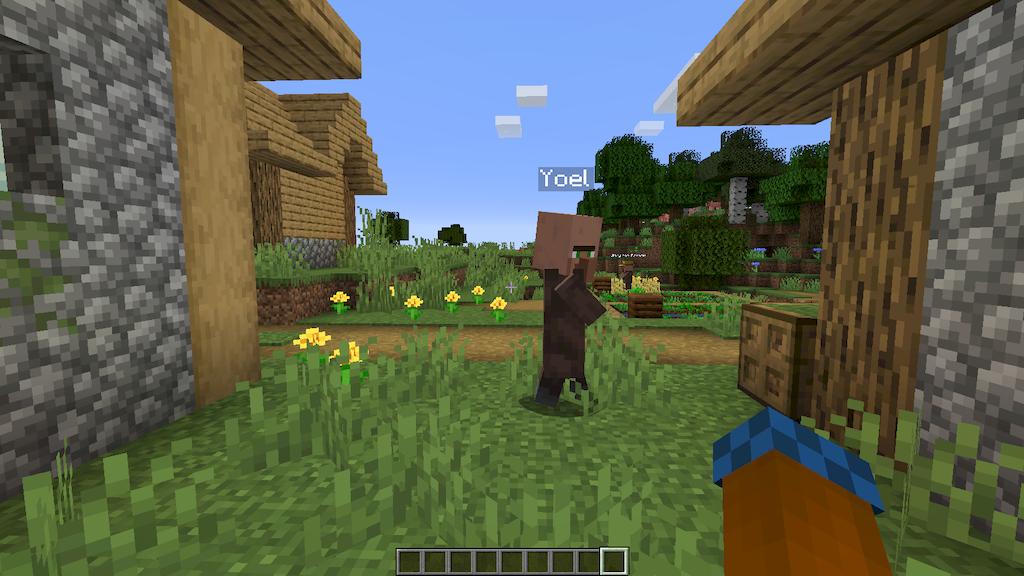 Villager Names Mod Screenshots 4