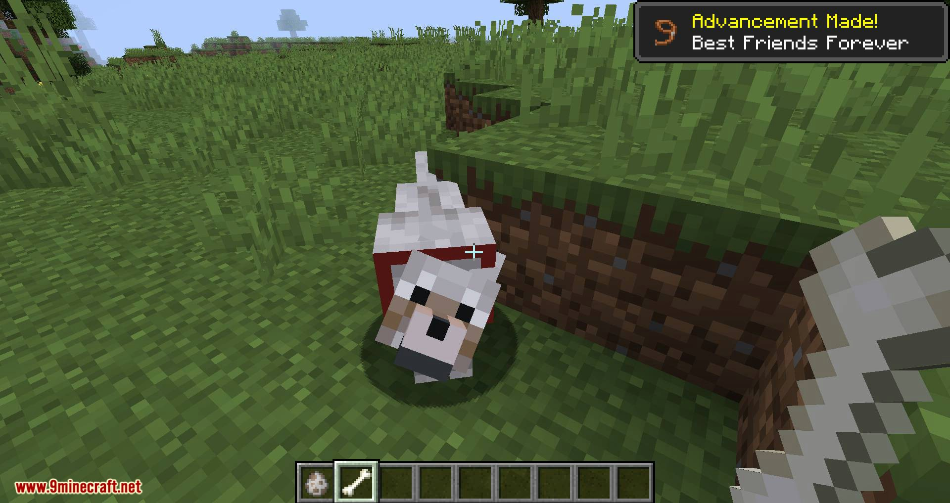 Save your pets mod for minecraft 01