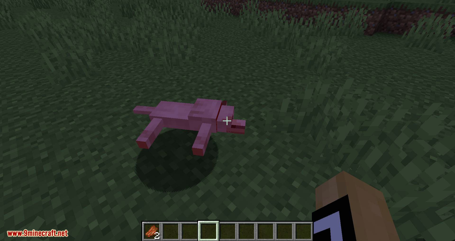 Save your pets mod for minecraft 03