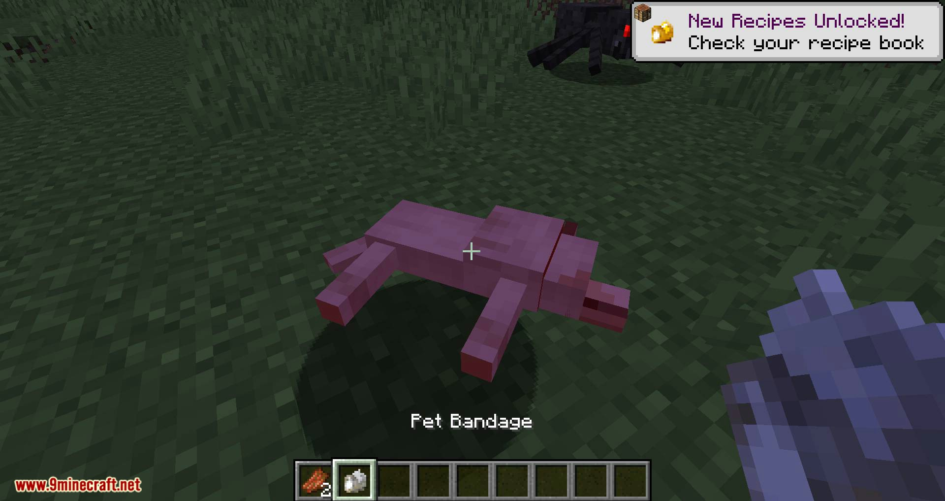 Save your pets mod for minecraft 06