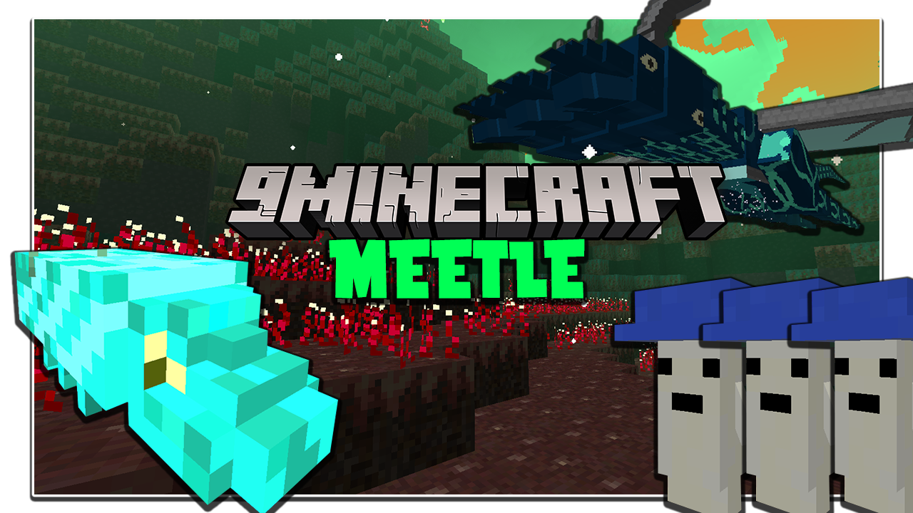 Meetle Mod 1.16.5