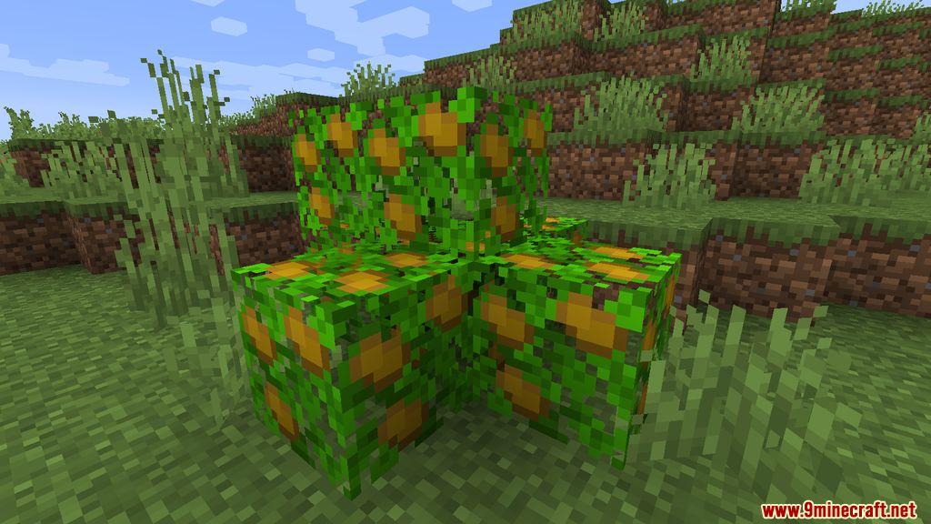 Useful Potatoes Mod Screenshots 6