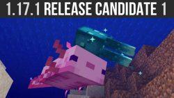 Minecraft 1.17.1 Release Candidate 1