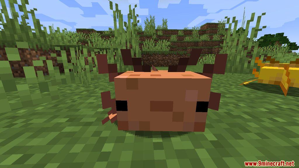 More Axolotls Mod Screenshots 8