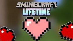 Lifetime Data Pack Thumbnail