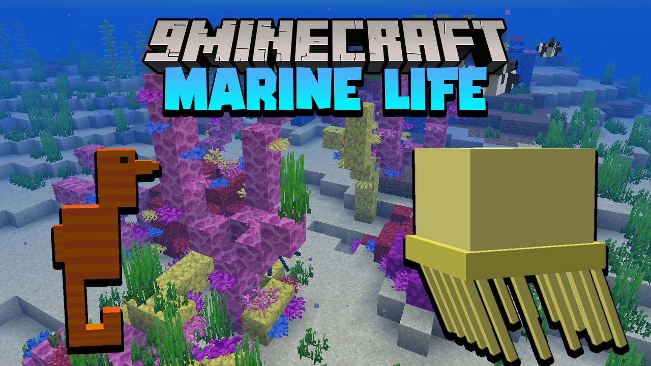 Marine Life Data Pack Thumbnail