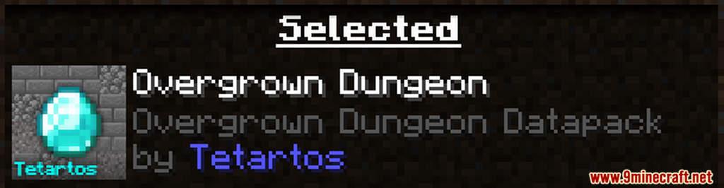 Overgrown Dungeon Data Pack Screenshots