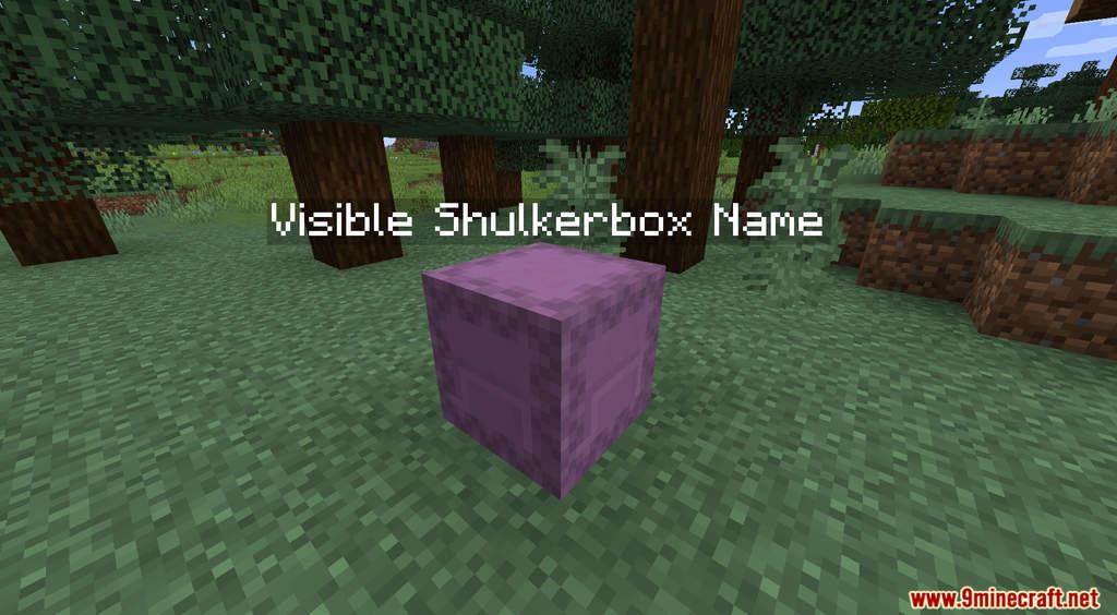 Visible Shulkerbox Name Data Pack Screenshots (4)