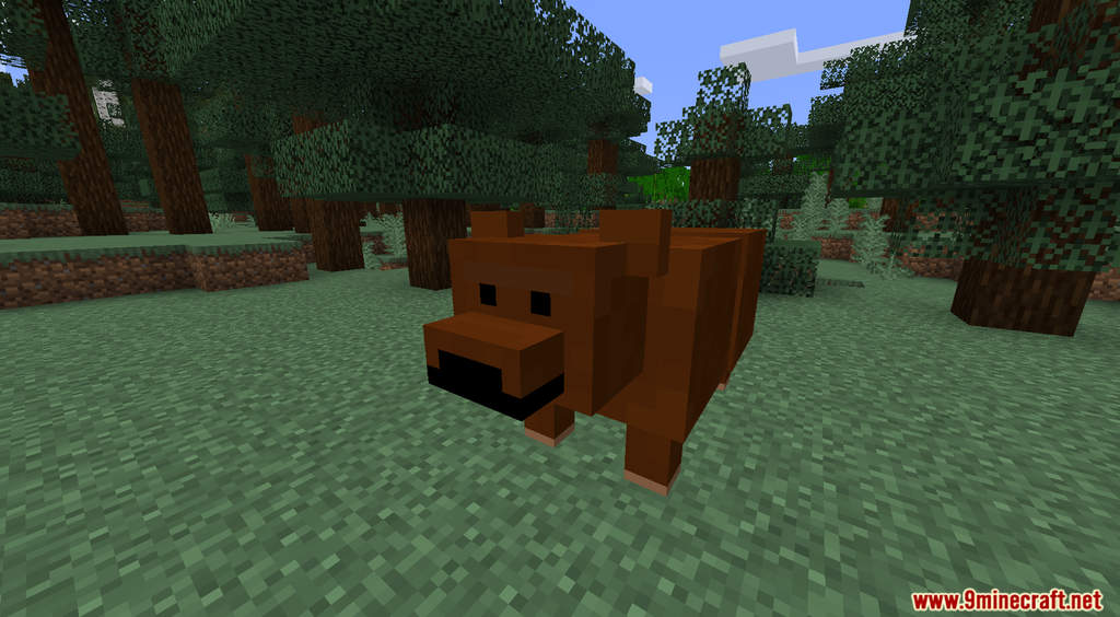 Grizzly Bears Data Pack Screenshots (1)