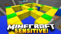 Sensitive-Puzzle-Map