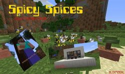 Spicy-Spices-Mod